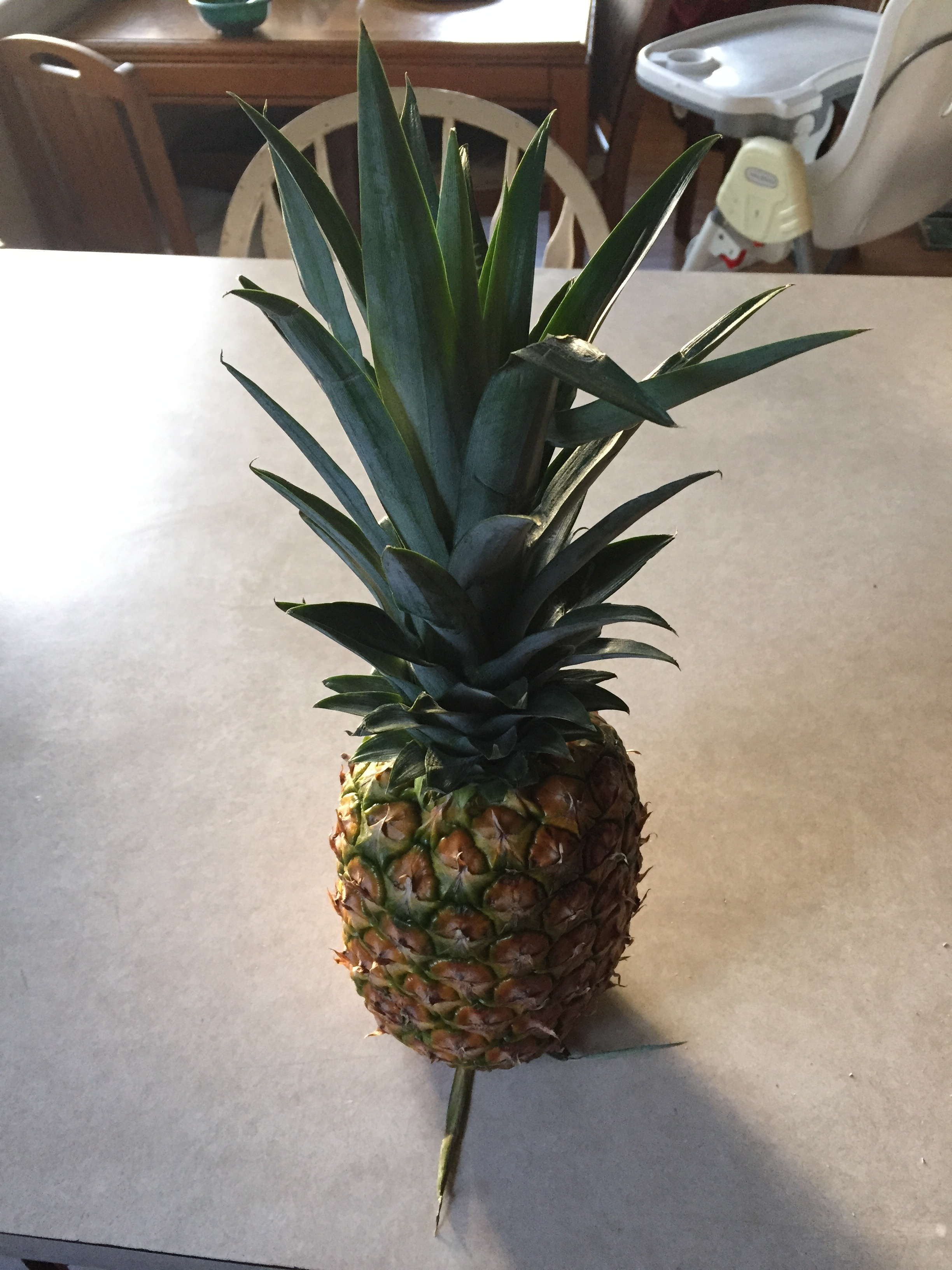 Pineapple Pregnancy Craving