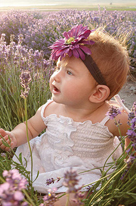 baby-in-lavender-field.jpg