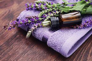 lavender-1-1-300px.jpg